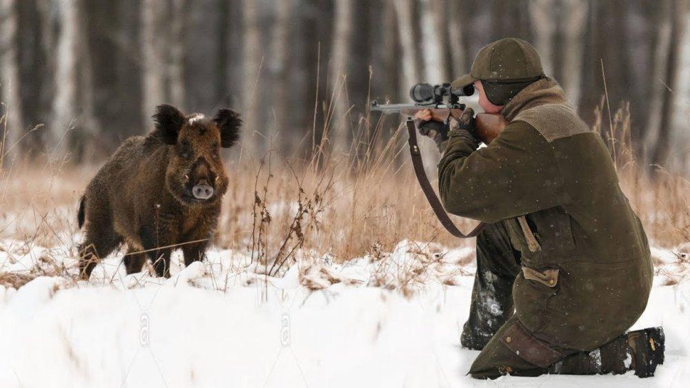 Сколько светит в ДНР за браконьерство