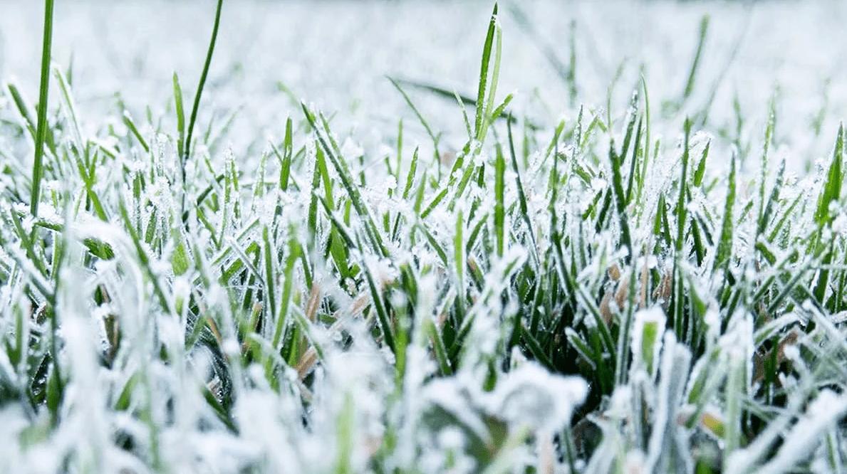 Чем грозит Республике аномальная зима