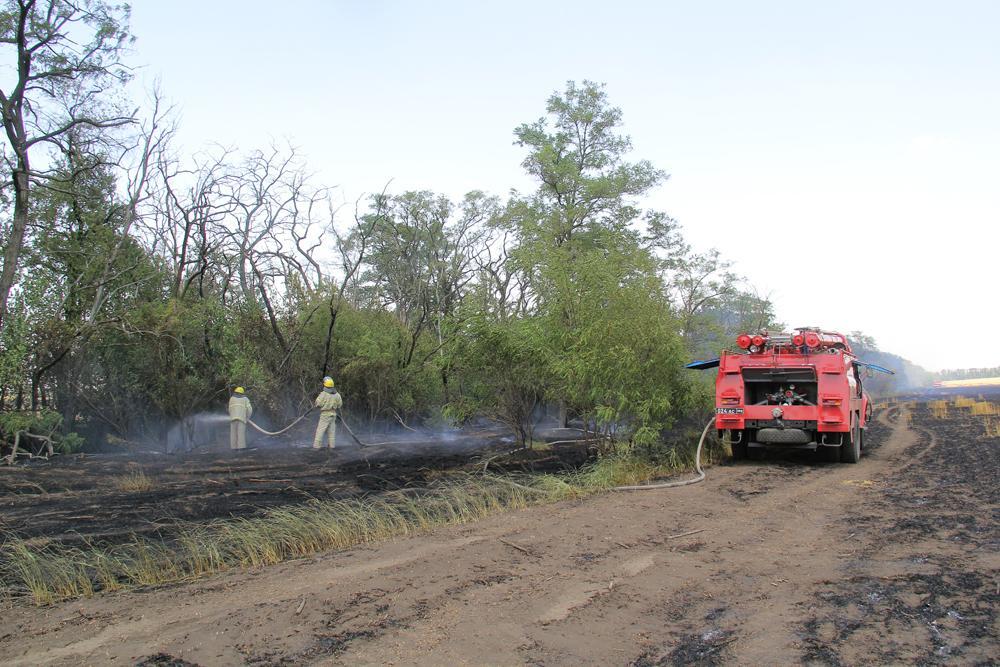 В ДНР сгорела пшеница
