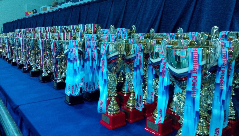 Каратисты Республики взяли 11 медалей на всероссийских соревнованиях